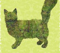Cat_Walking__un__4980f21a6f4a6.jpg