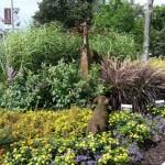 Bronson Park Gardens