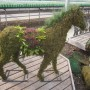 Topiary Animal Workshop