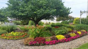gardens-to-explore
