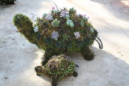 Animal Topiary Workshop